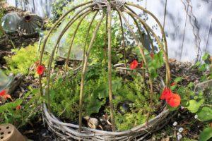 Cage avec fleurs