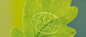 groupe ecocert