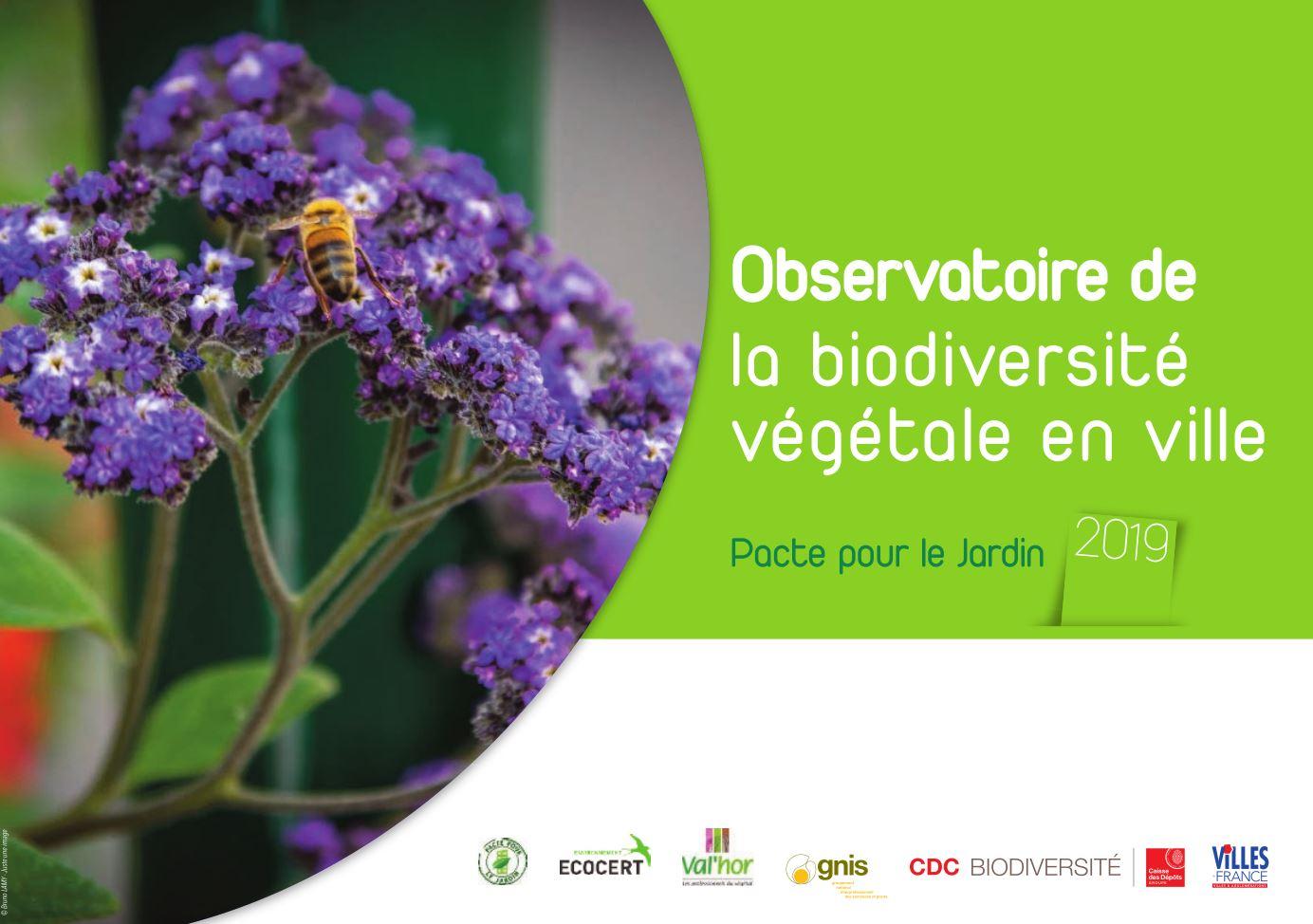 observatoire de la biodiversité végétale en ville 2019